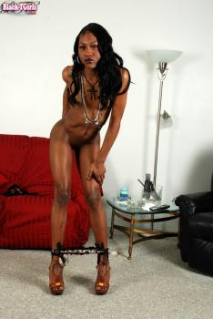 Black-tgirls.com- Sexy Phoenix