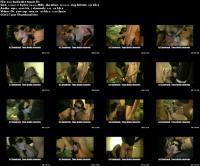 170207690_zavatrash_screens_0045-bukkake-tassin.jpg