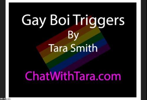 Gay Boi Triggers Erotic Audio by Tara Smith. Sexy Bi Encouragement Teasing | phonesexwife