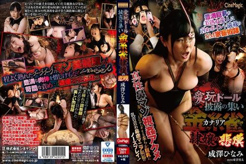 [CMN-201] Narisawa Hinami 愛玩ドール披露の集い 金糸雀隷嬢の悲嘆 調教 2019/06/07 Humiliation